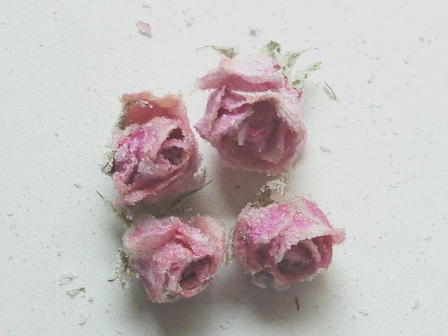 echte kandierte rosen klein 4 st ck 1 725 stk ihre genuss agentur. Black Bedroom Furniture Sets. Home Design Ideas