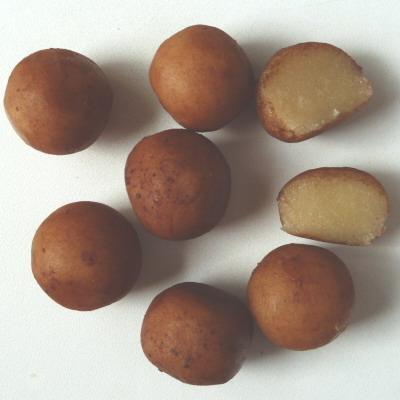Edelmarzipan Kartoffeln, Genuss-Agentur