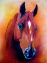 Kunstkarten Pferde, Fuchskopf mit Blesse, Pferdekopf braun, art-cavallo