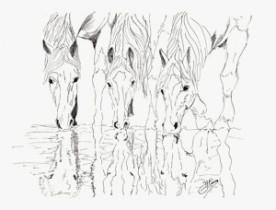 Kunstkarten Pferde, Pferde am Wasser, art-cavallo